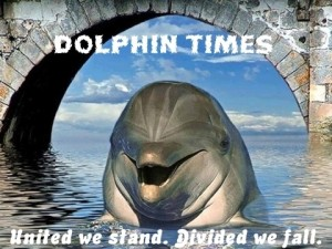 dolphin_times_logo